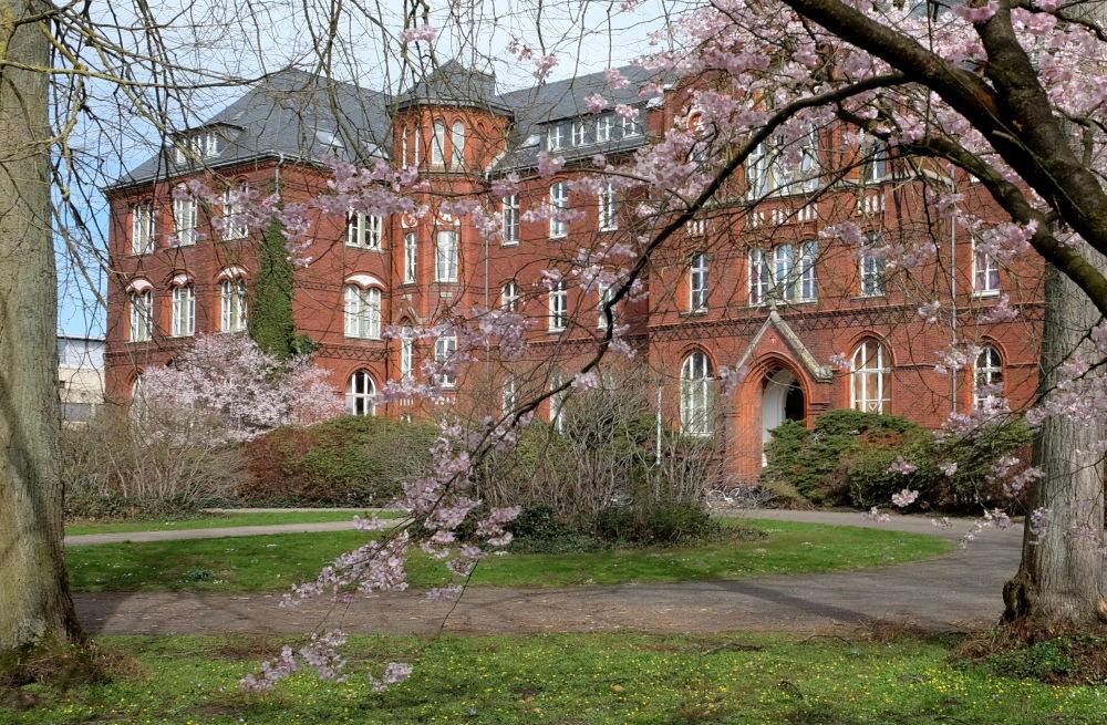 Frühlingsblüten im Park des alten Paterklosters (24.3.2019; Foto: Klare)