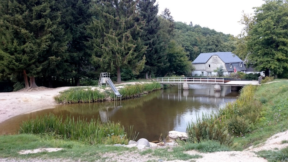 Naturbadeteich Harfenmühle (9.9.2019; Foto: Klare)