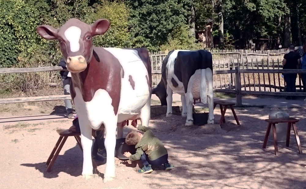 """Die Plastikkühe im Tierpark kann man """"melken"""" (18.9.2019; Foto: Klare)"""
