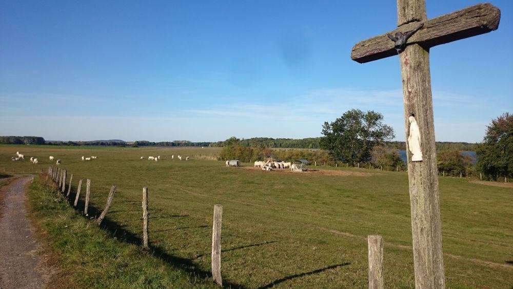 Wegekreuz bei Tarquimpol (19.9.2019; Foto: Klare)