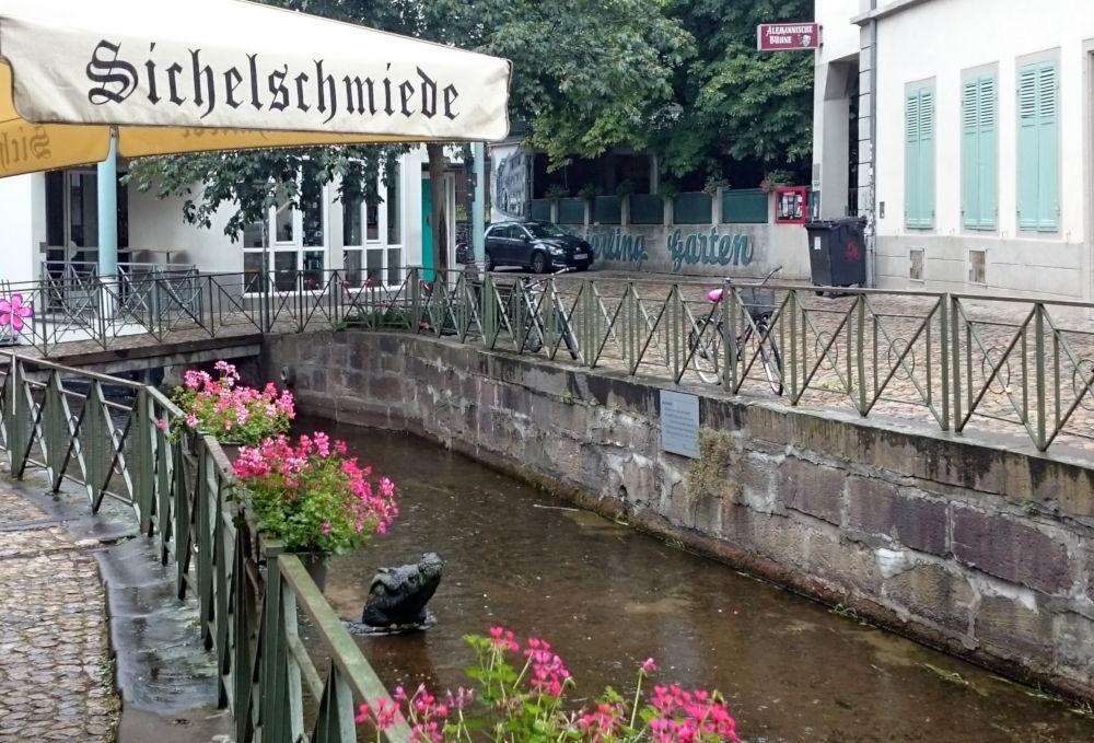 Sichelschmiede: Biergarten mit Krokodil (Freiburg, 8.7.2019; Foto: Klare)