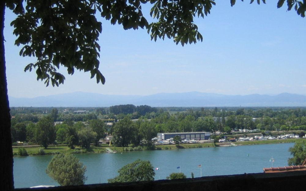 Blick über den Rhein zu den Vogesen (9.7.2019; Foto: Klare)
