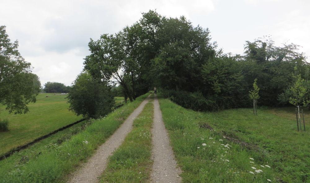 Auf dem Weg nach Karlsruhe (13.7.2019; Foto: Meyerbröker)