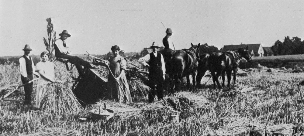 1910 Feldarbeit im Emmerbachtal