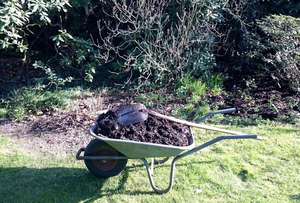 Frühjahr: Der fertige Kompost wird verteilt (23.3.2020; Foto: Klare)