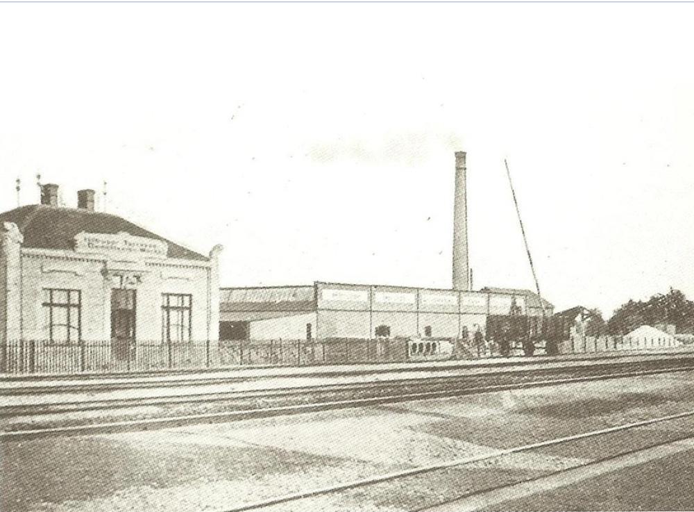 Die Firma F.M. Dalhoff (1905)