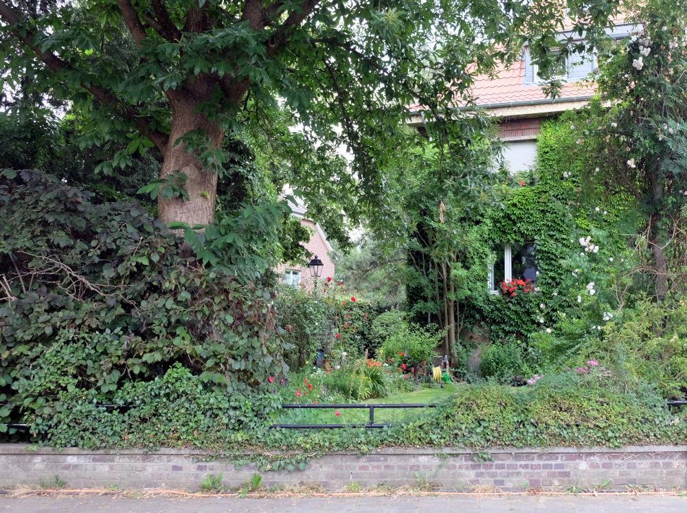Am Klosterwald 7 (25.6.2020; Foto: Klare)
