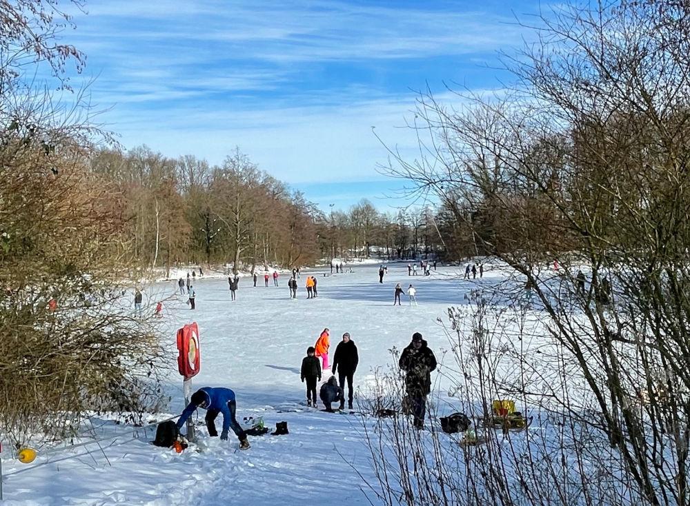 Lebhafter Betrieb auf dem zugefrorenen Oedingteich (14.2.2021; Foto: Henning Klare)