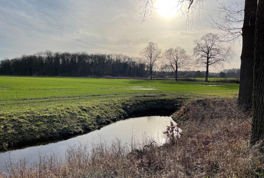 Bei Haus Borg (Rinkerode, 20.2.2021; Foto: Henning Klare)