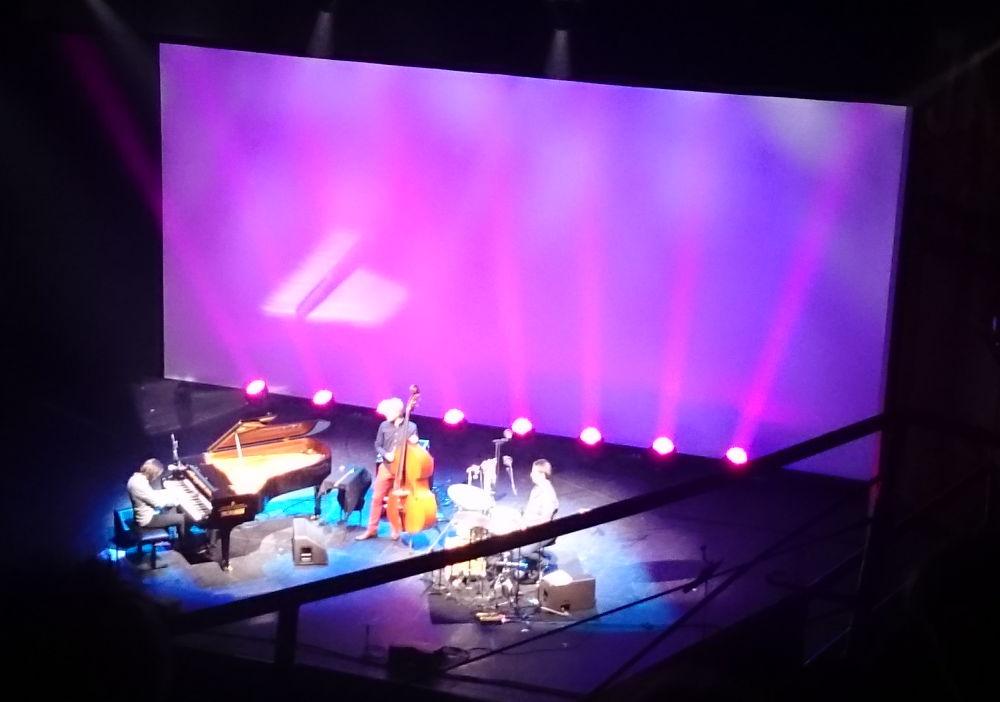 Vadim Neselovskyi Trio in Münsters Großem Haus (7.1.2018; Foto: Klare)