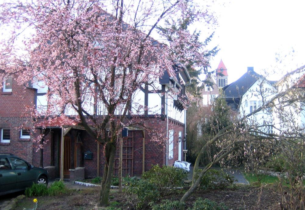 Am Klosterwald 6A von Süden gesehen, rechts im Bild Nr. 4, dahinter Nr. 2 (18.3.2008; Foto: Klare)