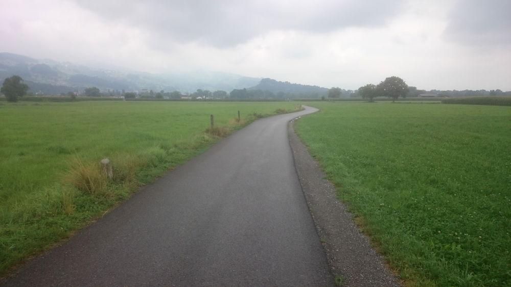 Auf dem Weg zum Alten Rhein (23.7.2018; Foto: Klare)