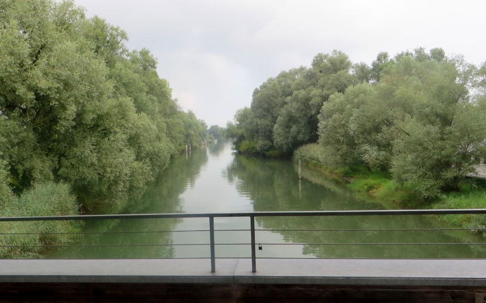 Der Alte Rhein (23.7.2018; Foto: Meyerbröker)