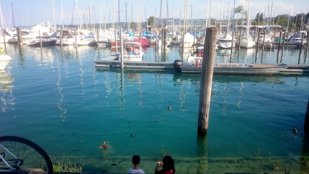 Konstanz: Kinder am Hafen (24.7.2018; Foto: Klare)